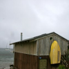 Thumbnail image for New Zealand: Weather…or Not