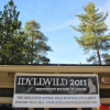 Thumbnail image for Festive Festivals of Idyllwild!