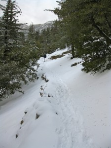 snowshoeing-in-idyllwild