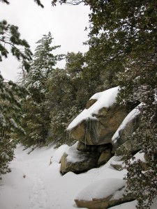 devils-slide-trail-in-snow-idyllwild-california