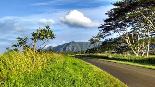 image-empty-road-kauai