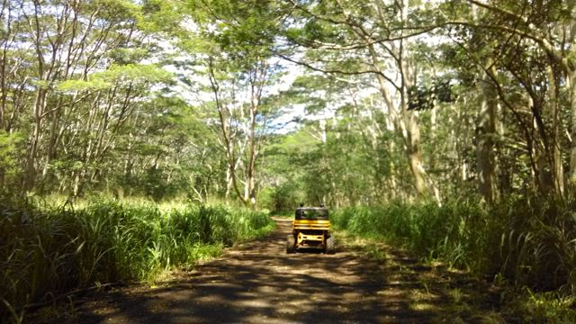 image-atv-kauai