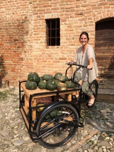 image-peddaling-the-pumpkin-cart-emilia-romagna-italy.jpg