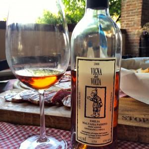 image-2008-vigna-del-volta-emilia-malvasia-passito-from-la-stoppa-winery