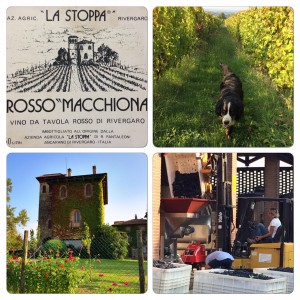 image-collage-of-la-stoppa-winery-emilia-romagna-italy