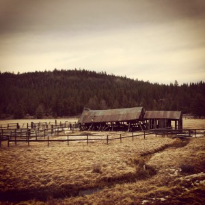 image-old-barn-truckee-country-kia-testdrive