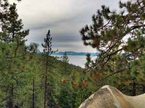 image-lake-tahoe-through-the-pines-sorento-adventure